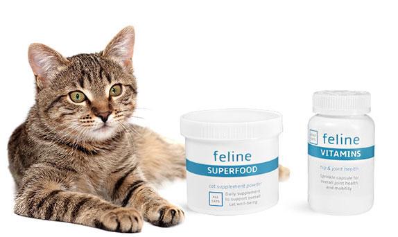 Cat Supplement Bottles and Jars
