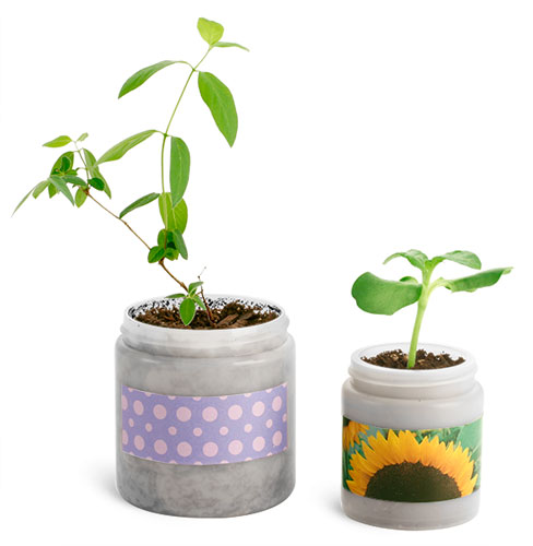 Natural Plastic Gardening Jars