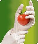 Food Industry Gloves