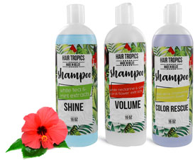 Hair Product Containers, Shampoo Bottles